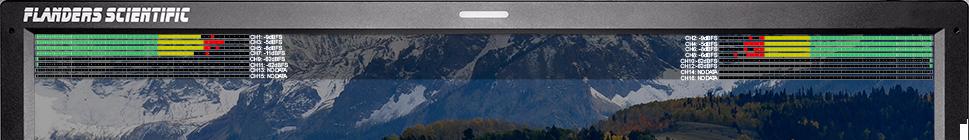 尊正监视器AM550水平音频表