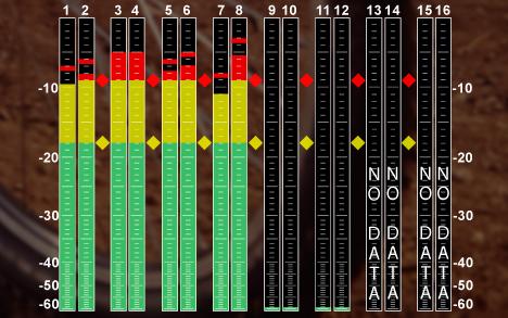 尊正监视器AM420垂直音频表