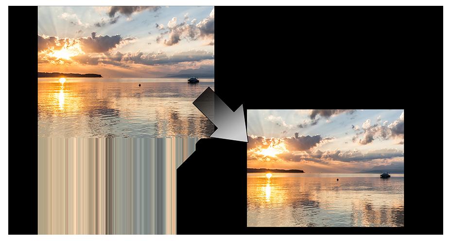 尊正监视器AM420中2:1像素到像素